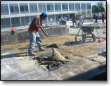 institutional roof repairs, institutional roofing systems, baltimore, county, md